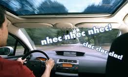 Nhec  Sobre grilos e outros barulhos do carro Nhec1