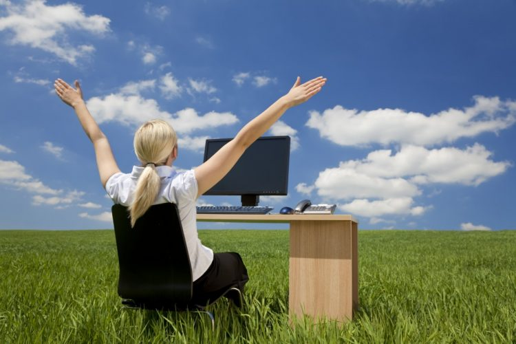 Somente através da liberdade total é que o computador revela seu verdadeiro potencial  A SOCIEDADE DA VIGILÂNCIA Freedom Lady
