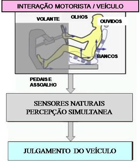 sensores naturais