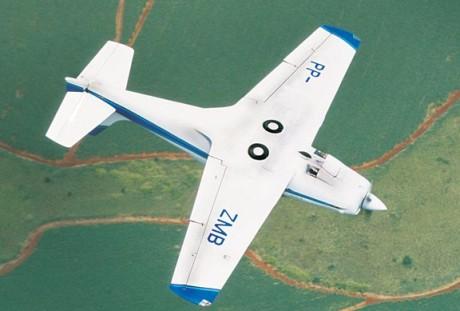O Falco brasileiro (seqair.com)