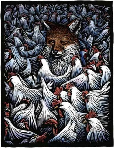 fox_0