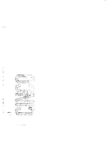 Detalhe da nota de 5 Reais em preto e branco. Alguns detalhes ficam mais evidentes (fonte: autor)