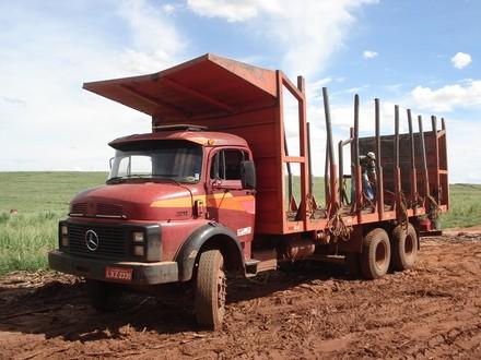 Mercedes canivieiro bis