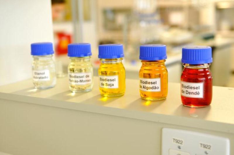 Biodiesel obtido de matérias primas diferentes (www.embrapa.br)