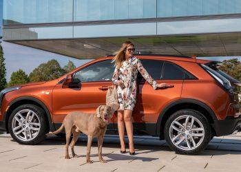 Cadillac XT4 350D (Foto: 1zoom.me)